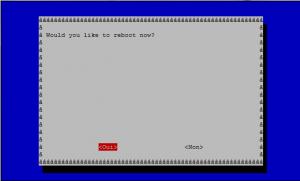 raspi-config reboot